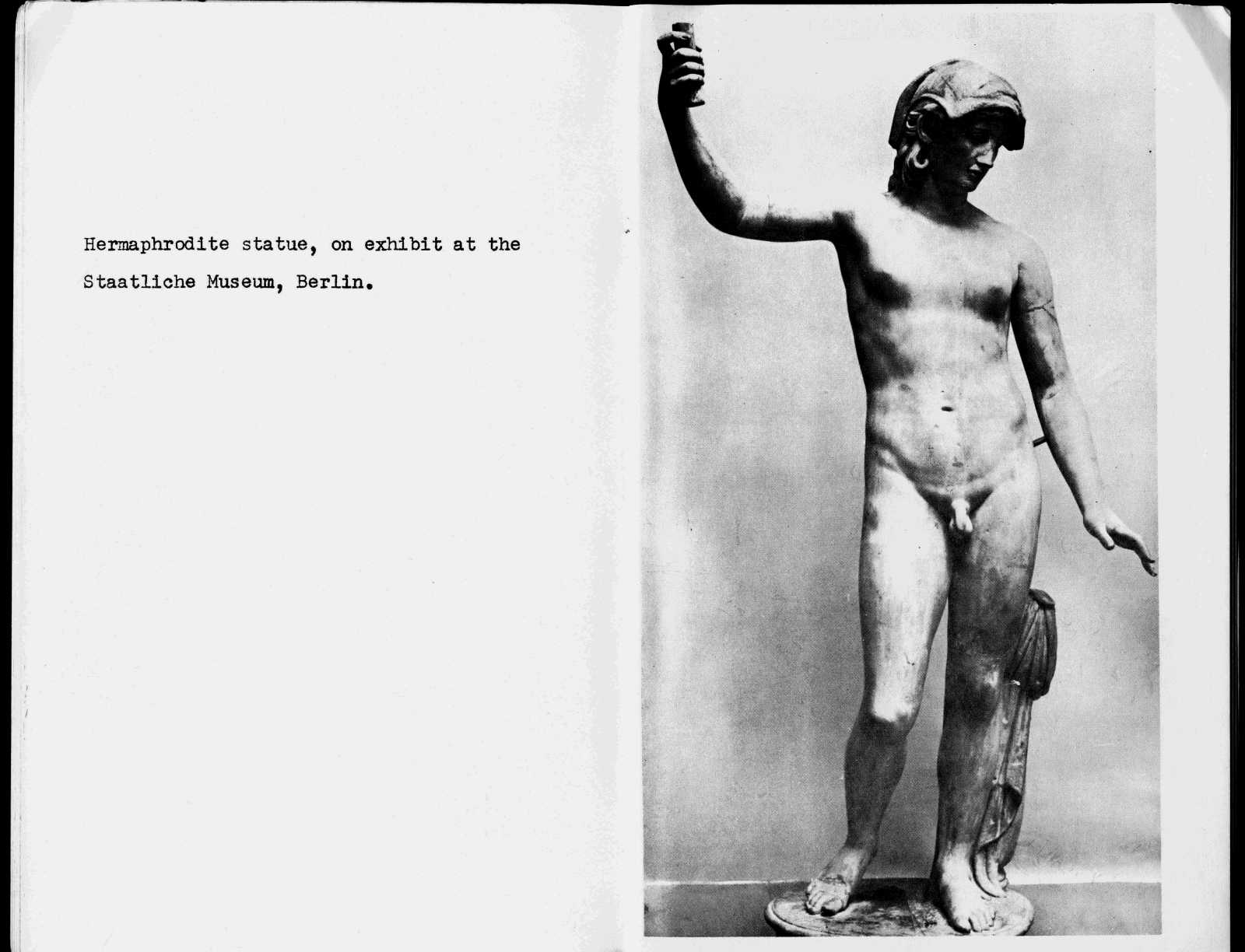 Hermaphrodite Below are the images from A Private Anthropological Cabinet of the  Hermaphrodite: The Bisexual Figure in Photographs and Illustrations.
